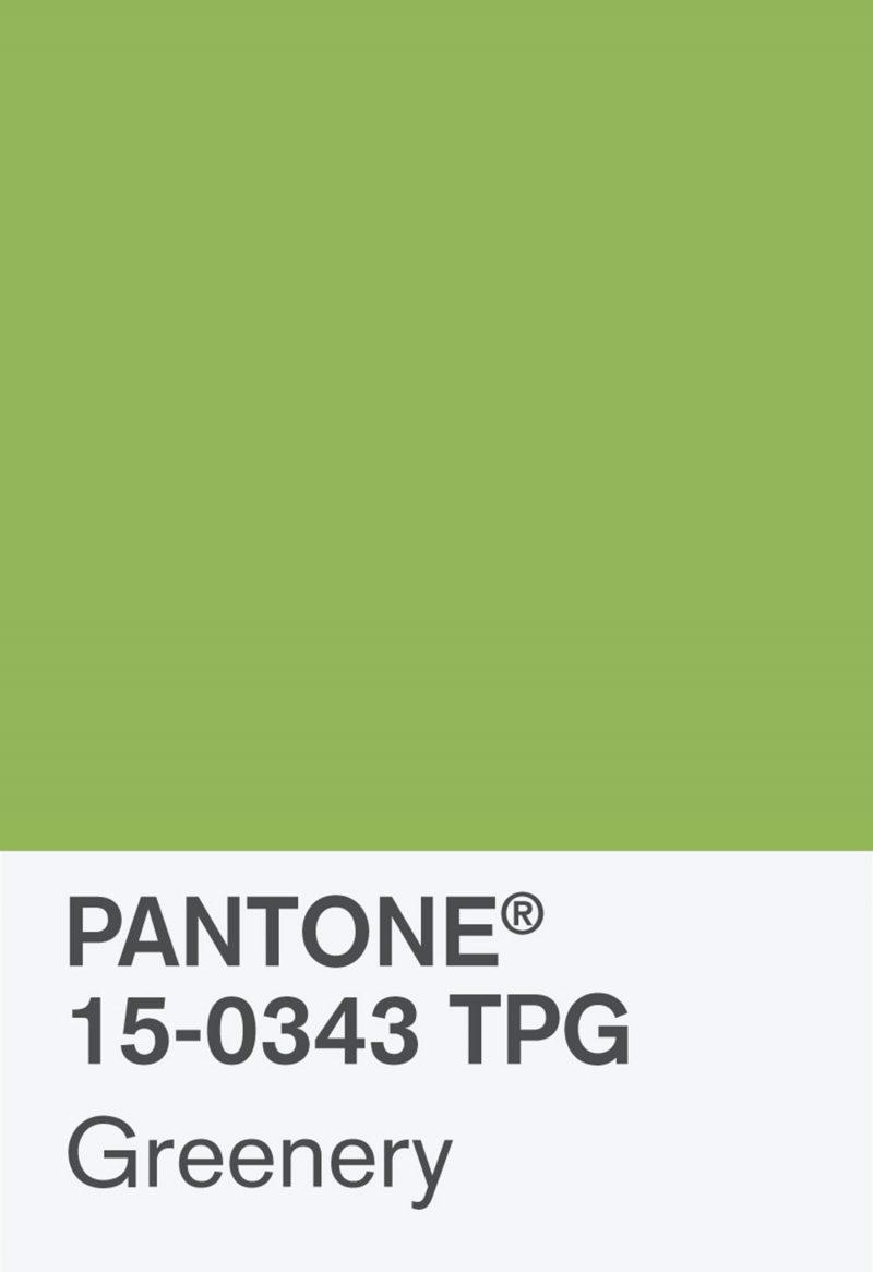greenery pantone colour 2017 image
