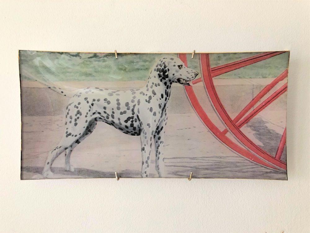 dalmation dog decoupage plate image