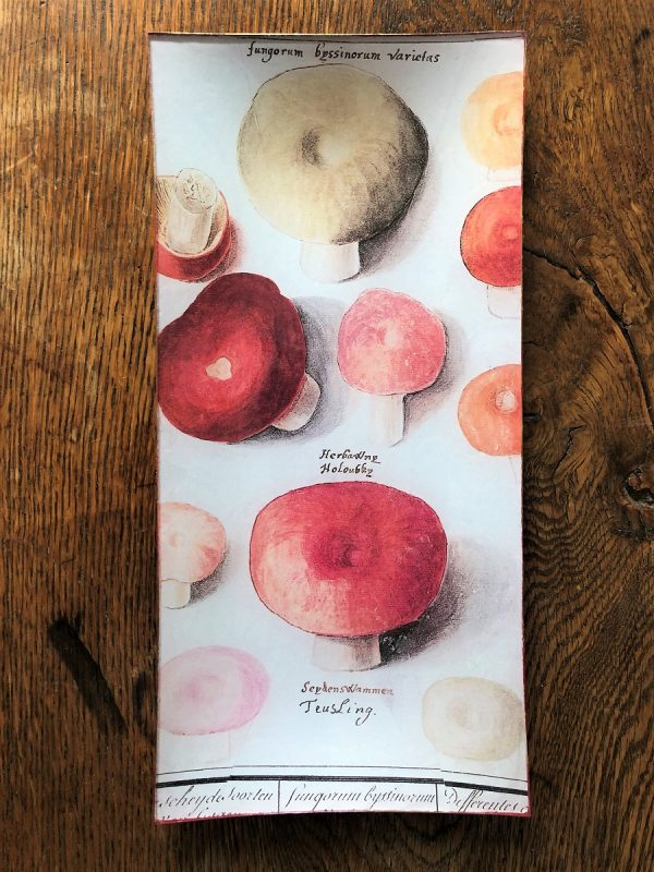 fungi decoupage plate image