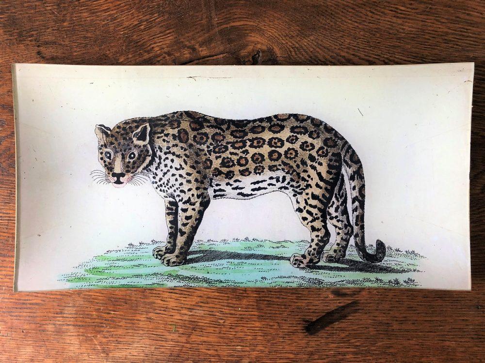 leopard decoupage plate image