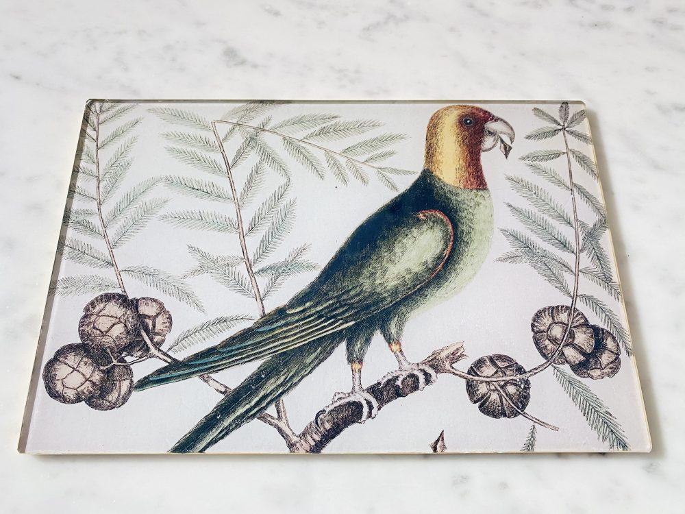 Parrot decoupage glass placemat image