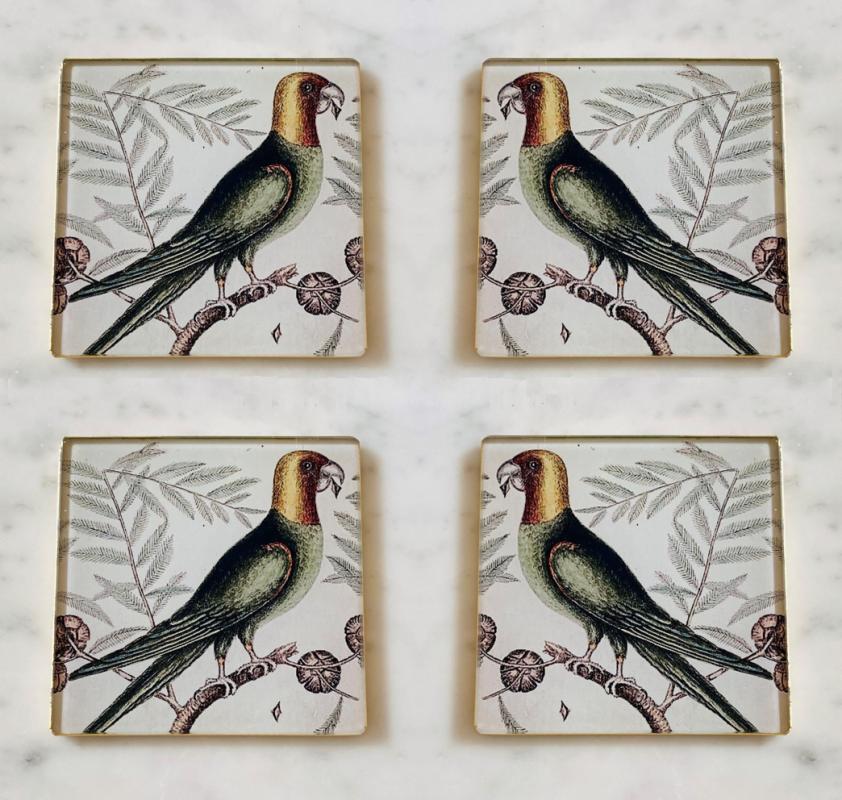 carolina parrot decoupage glass coasters set of four image
