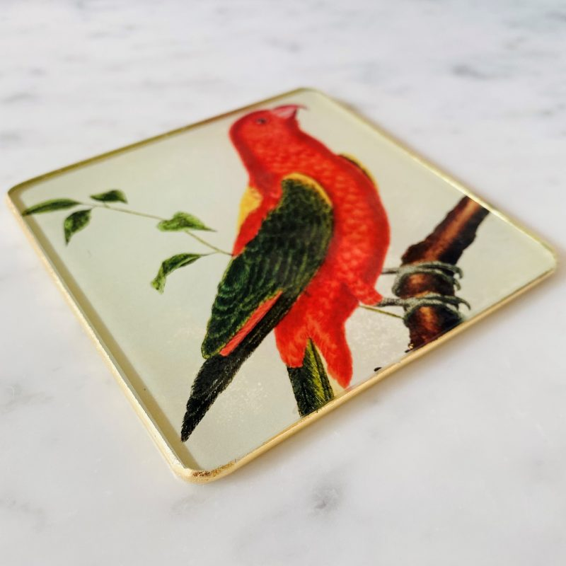chattering parrot decoupage coaster image