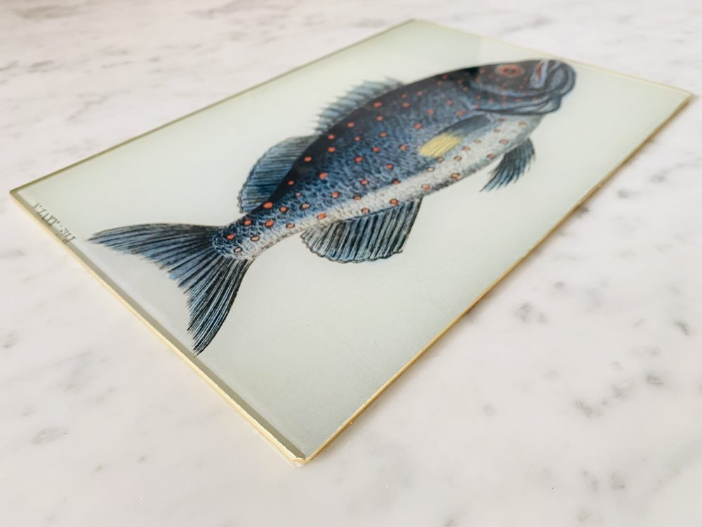 fish glass placemat serving mat image