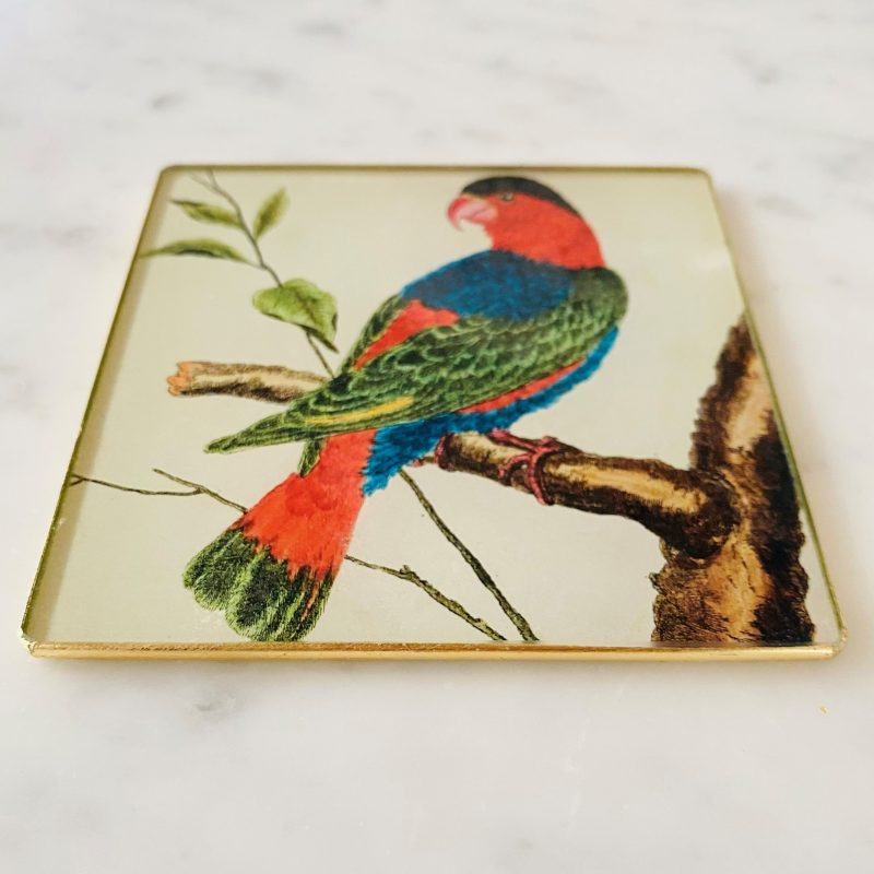 lory parrot coaster image