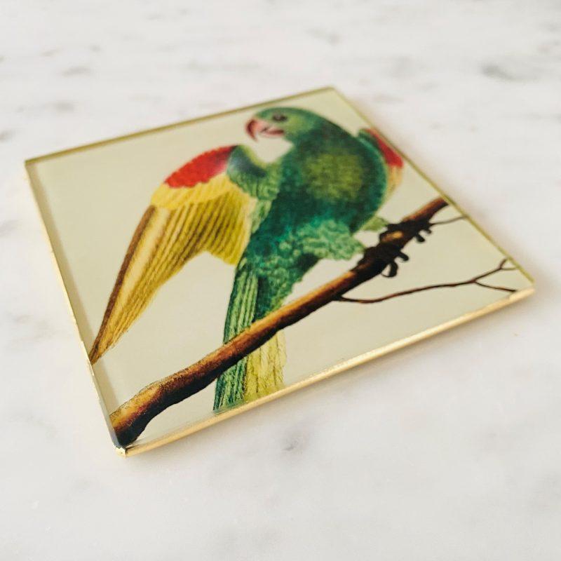 parakeet bird decoupage glass drinks coaster image