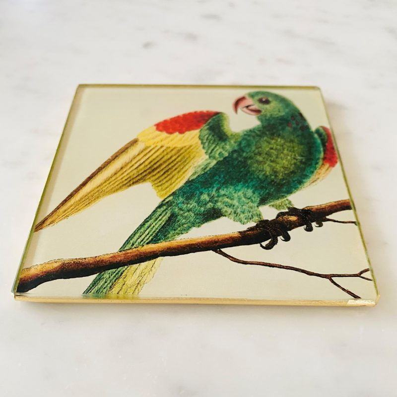 parakeet decoupage glass coaster image