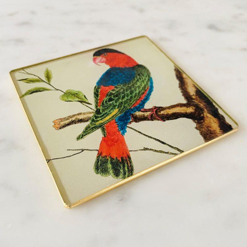 lory parrot decoupage glass coaster image