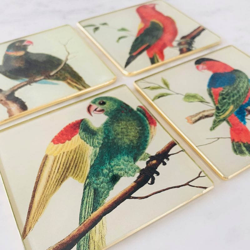 parrot decoupage glass drinks coasters set of four image