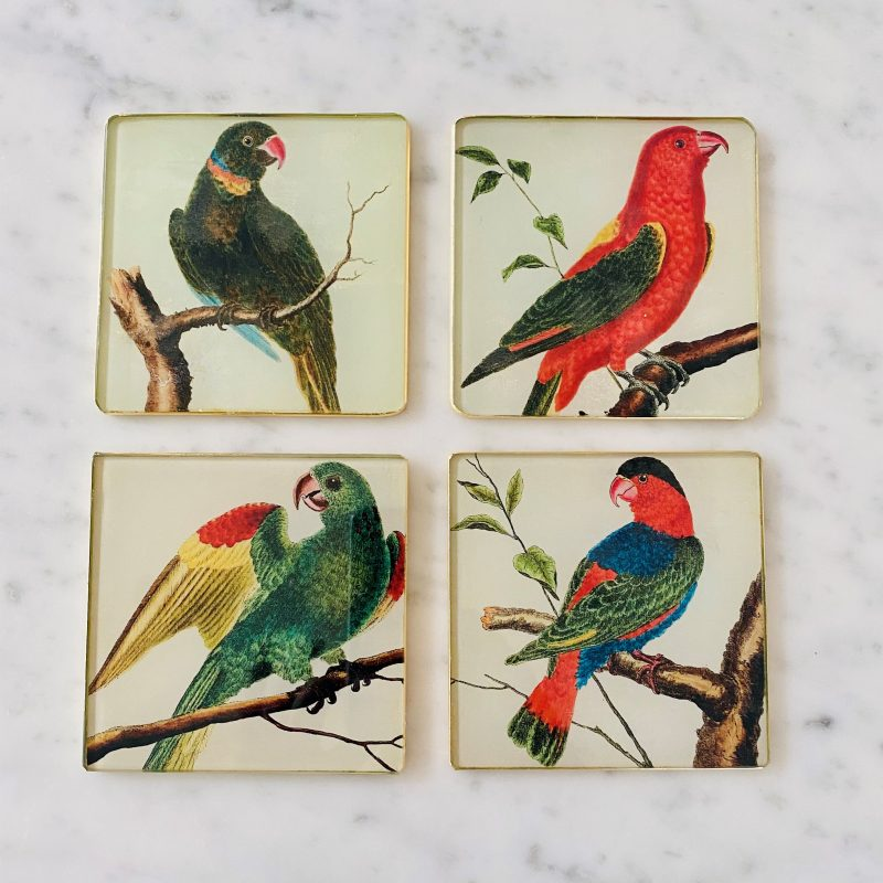 set of parrot decoupage glass coasters image
